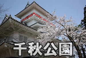 pokemonnosu-akita-03