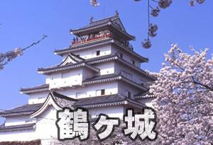pokemonnosu-fukushima-00
