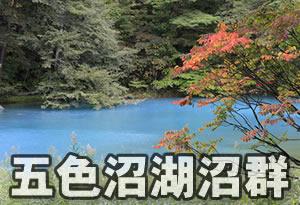 pokemonnosu-fukushima-02