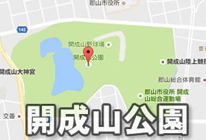 pokemonnosu-fukushima-07