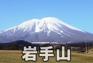 pokemonnosu-iwate-00