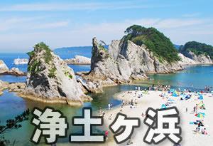 pokemonnosu-iwate-02