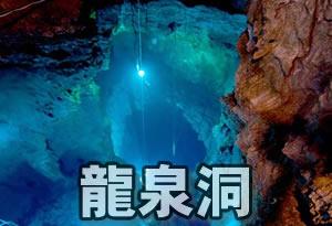 pokemonnosu-iwate-03