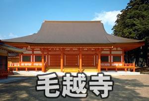 pokemonnosu-iwate-04