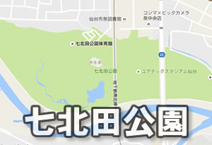 pokemonnosu-miyagi-06