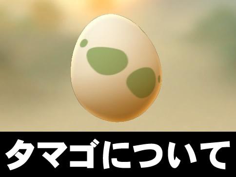 【ポケモンGO】たまごの種類について/10キロ/5キロ/2キロ一覧