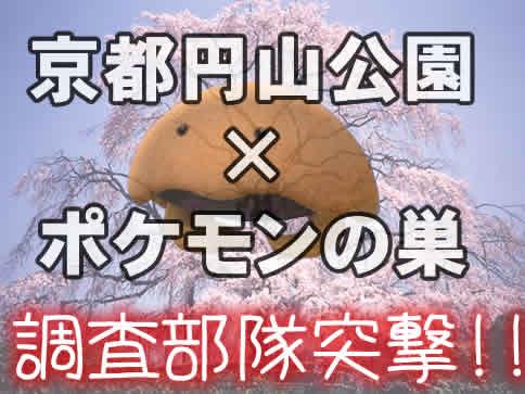 【ポケモンGO】京都市円山公園の「ポケモンの巣」に実際に行ってみた!