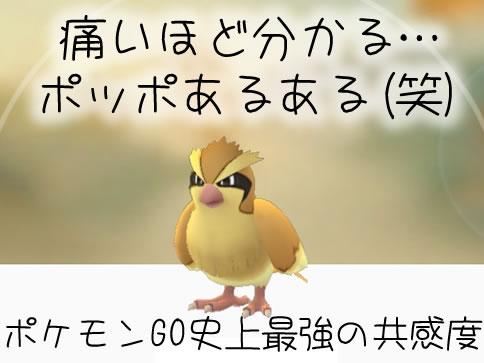 【ポケモンGO】ポッポ捕獲時のあるある【絶対共感できる】