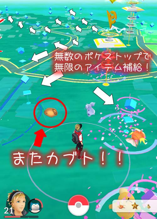 maruyama-park-04