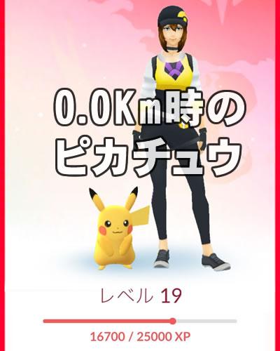 partner-pikachu-01
