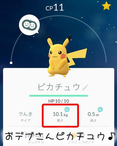 partner-pikachu-03