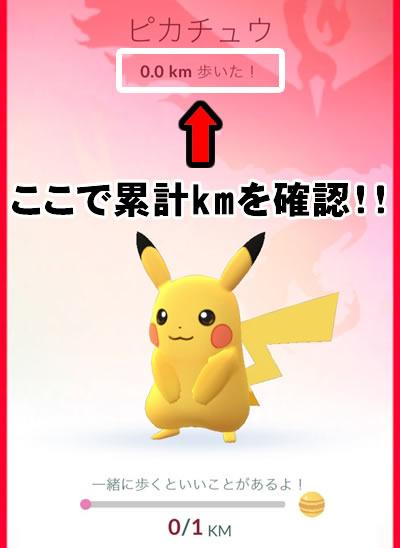partner-pikachu-05